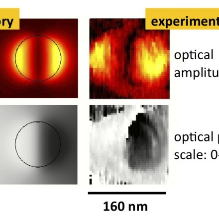 Mapping optical fields of resonant particles