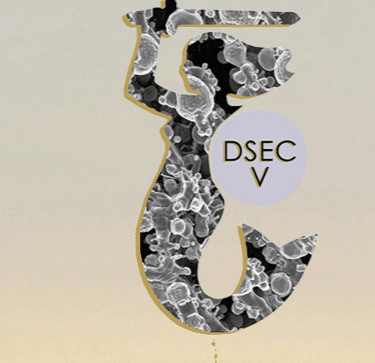 5th International Workshop on Directionally Solidified Eutectic Ceramics (DSEC V)