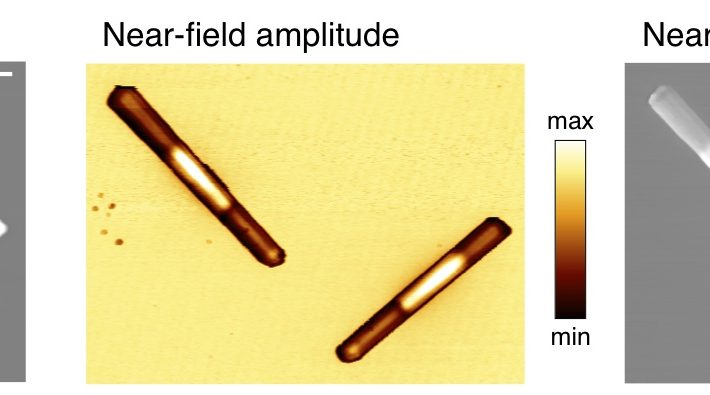 Investigating local conductivity of semiconductor nanowires