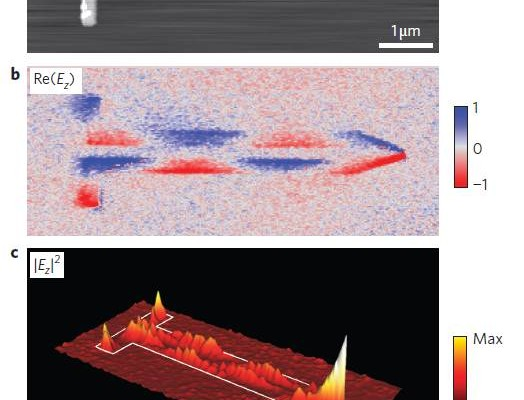 Infrared nanofocusing on transmission lines