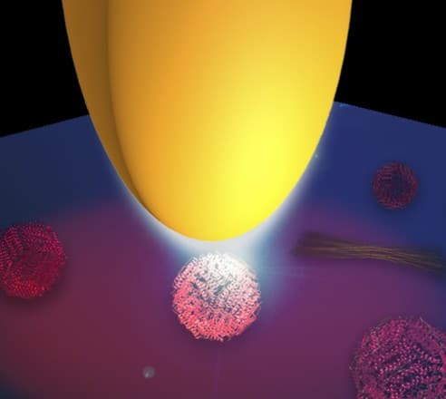 Illustration of infrared protein nano-spectroscopy. A metal tip (yellow) is illuminated with infrared light. Due the antenna function of the tip, the light is concentrated at the tip apex and creates a nanofocus, which illuminates the proteins. Copyright: CIC nanoGUNE